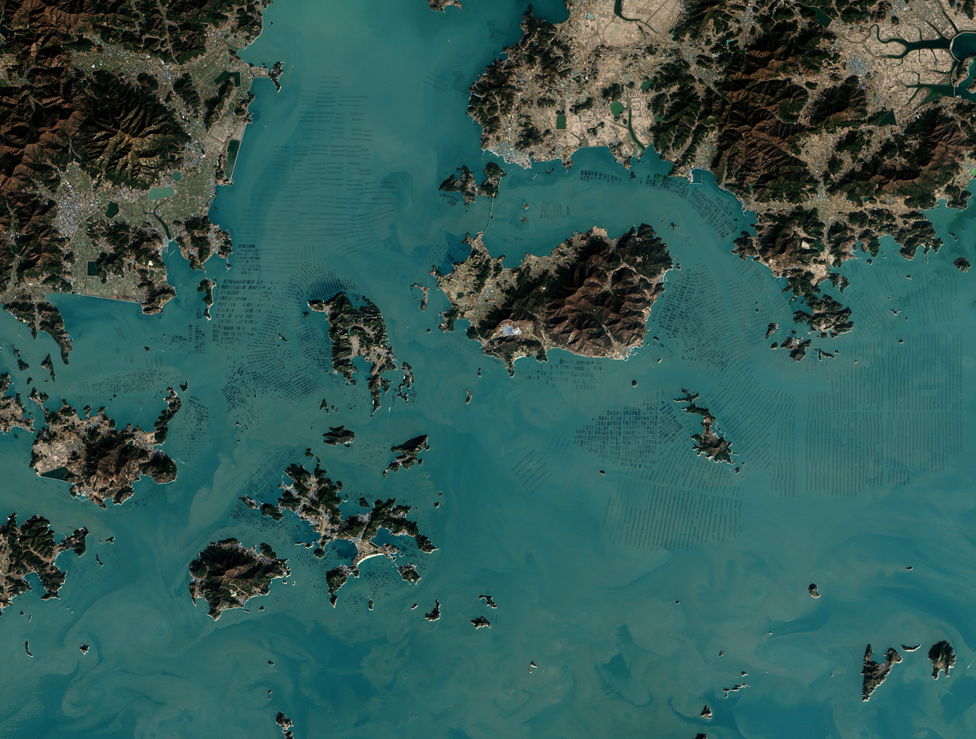 Seaweed Farms in South Korea acquired by The Operational Land Imager (OLI) on Landsat 8