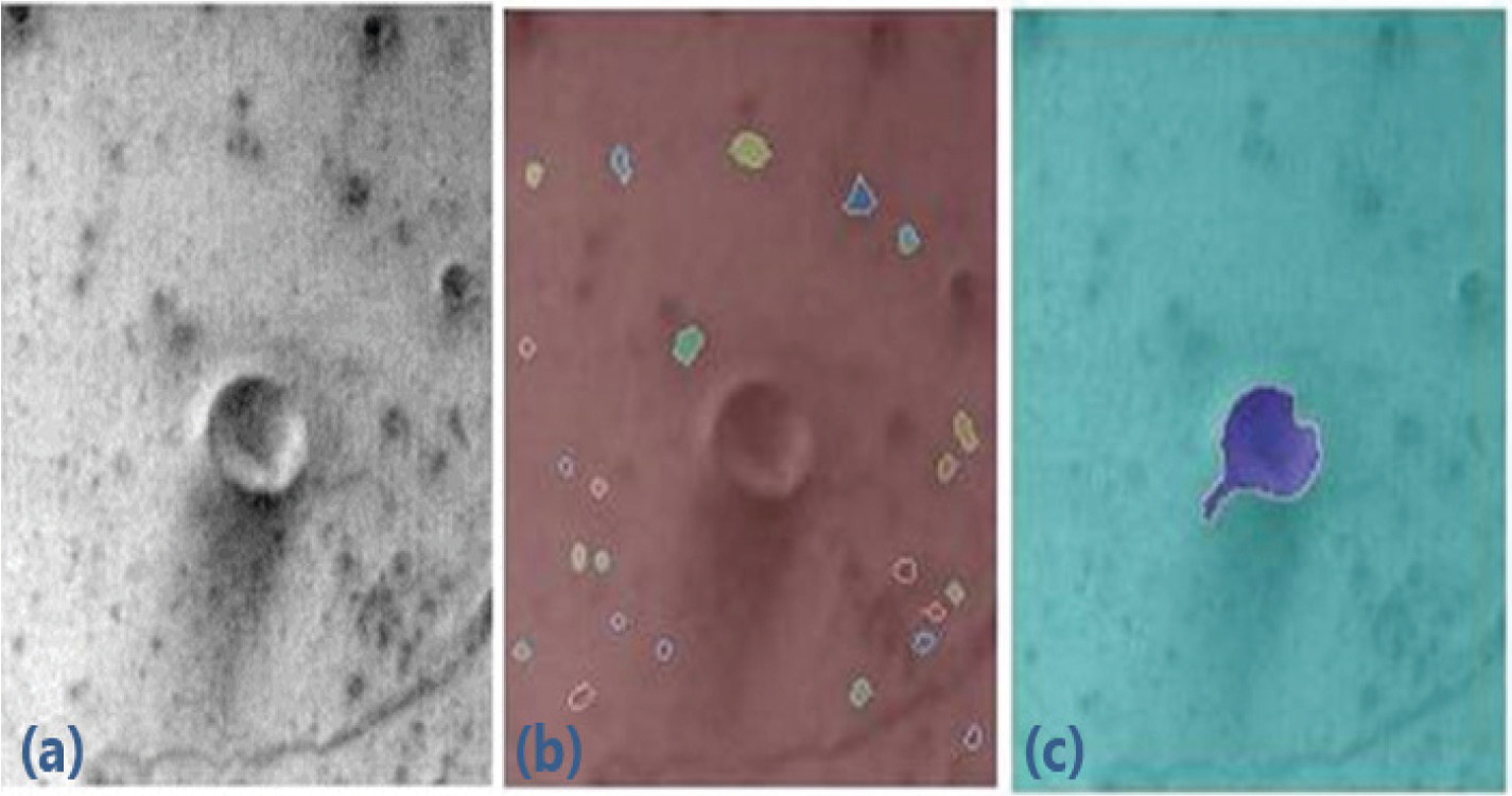 Feature extraction from data collected during the Mars Global Surveyor mission. The original image (a), the close contour features (b) and the elliptic shape features (c) are shown.
