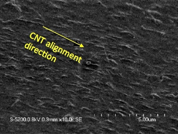High Resolution Scanning Electron Micrograph (HRSEM) of exposed aligned CNT of an extruded SWCNT/polymer composite fiber.